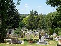 View to Sturovo Industrial Area from Belvárosi cemetery, Esztergom, Hungary.jpg