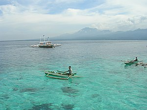 Negros Island - View of Negros from Cebu across the Tañon Strait.