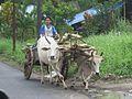 Village road (8380009819).jpg