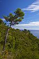 Vista verso levante - panoramio.jpg