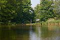 Visvijver Zoet Water Oud-Heverlee A.jpg