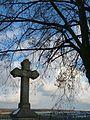 Wachtberg Denkmal 169 Wegekreuz Züllighovener Weg.jpg