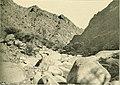 Wadi in the Eastern Desert, Egypt.jpg