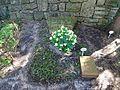 Waldfriedhof dahlem ehrengrab Pfeil, Christian.jpg