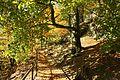 Wanderung Elbsandsteingebirge Papstdorf zum Papststein - Wanderweg entlang der Klippe - panoramio.jpg