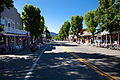 Weaverville Historic District-12.jpg