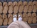 Which pair? (7112693815).jpg