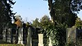Wiener Zentralfriedhof 9.jpg