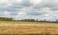 Wijnjeterper Schar, Natura 2000-gebied provincie Friesland 29.jpg