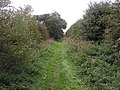 Wolds Footpath - geograph.org.uk - 244083.jpg