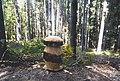 Wooden Boletus, Vallombrosa forest, Tuscany.jpg