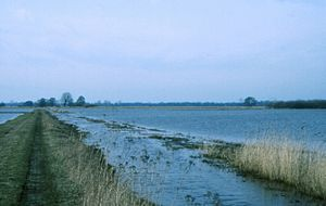 Wümme - Low riverside pastures of the Wümme near Bremen. During winter these are often flooded.