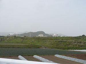 Geothermal power in Japan - Image: Yamagawa geothermal power station full view