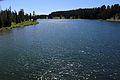 Yellowstone River 06.JPG