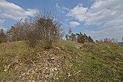 Zaniklý hrad Rysov (02).jpg
