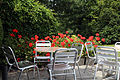 'Hortorum' pelargonium with cafe tables and chairs Gibberd Garden Essex England 02.JPG