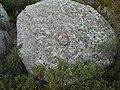 Étangs de La Jonquera - Dolmen Estanys III - 8.jpg