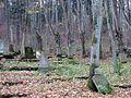 Świdwiński kirkut, strona północna.jpg