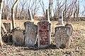 Єврейське кладовище Жабокрич6.jpg