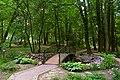 Ботанічний сад НУБіП DSC 0524.jpg