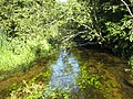 Вид с мостика на реку Колпанскую, приток Парицы, приток Ижоры - panoramio.jpg