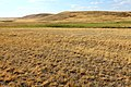 Высота 243 м. в северо-западном направлении - panoramio.jpg