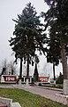 Гнівань (100) Братська могила 155 радянських воїнів.jpg