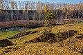 Ковер из березовых листьев.jpg