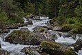 Мала Църква - река Леви Искър - panoramio.jpg