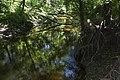 Нижня течія річки Євсуг 05.jpg