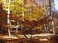Осінній Чатир-Даг 01.jpg