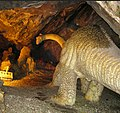 Пещера сталактитов + доисторический музей.jpg