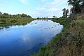 Река Урал в восточном направлении - panoramio (2).jpg
