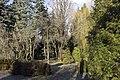 Сирецький дендрологічний парк 40.jpg