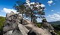 Скелі Довбуша 20160510 002.jpg
