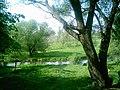 Яуза - panoramio - Ли Артем.jpg