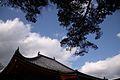 中山寺 本堂 - panoramio.jpg