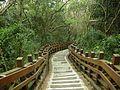 十八尖山步道 - panoramio.jpg