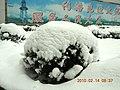 安徽省含山县含城春节雪景 - panoramio - luchangjiang~鲁昌江 (6).jpg