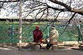 帽子の二人 2009春 (3416735211).jpg