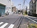 旧墨堤の道 - panoramio (1).jpg