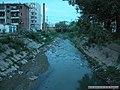 金龙溪 - panoramio.jpg
