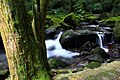青山瀑布步道 - panoramio (4).jpg