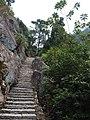 鳝溪登山道 - Shanxi Creek Path - 2013.01 - panoramio (2).jpg
