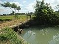 0125Views of Lumang Bayan irrigation canals 21.jpg