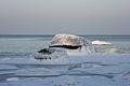 02.10.2013 Lahemaal Loksal,meri päikeseloojangu ajal 14.jpg