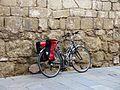 024 Bici vora el monestir (Sant Cugat del Vallès).JPG