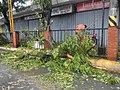 0749Effects of Typhoon Vamco Baliuag, Bulacan 50.jpg