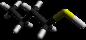 Butanethiol - Image: 1 Butanethiol 3D sticks by AHRLS 2012