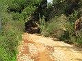 10-12-2016, Access road down to Praia do Barranco das Belharucas, Olhos de Água (1).JPG